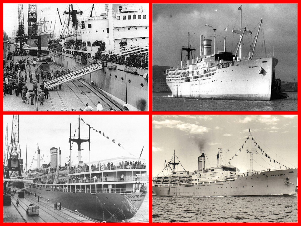 SS Groote Beer , SS Zaiderkruis, SS Waterman, Zbigniew Brzezinski, Tourists, Immigrants, Holland-America Line, 1950s, Immigration, Holland, Australia, USA, Canada